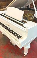 פסנתר-כנף-יד-2.jpg