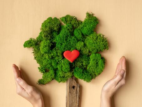 5 acciones para reducir la huella de carbono desde tu negocio