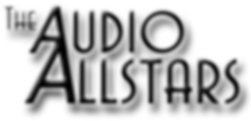 The Audio Allstars Function Band, Events Band, Wedding Band, Party Band