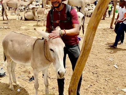 Travels in Niger--Part 3