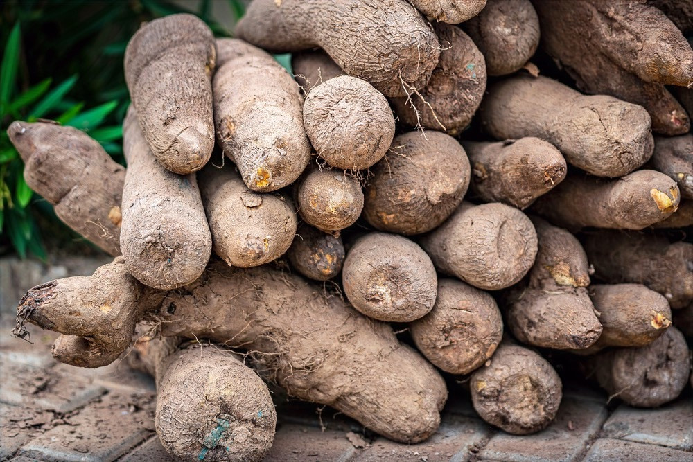 Stack of yams (Image James Dalrymple/Shutterstock)