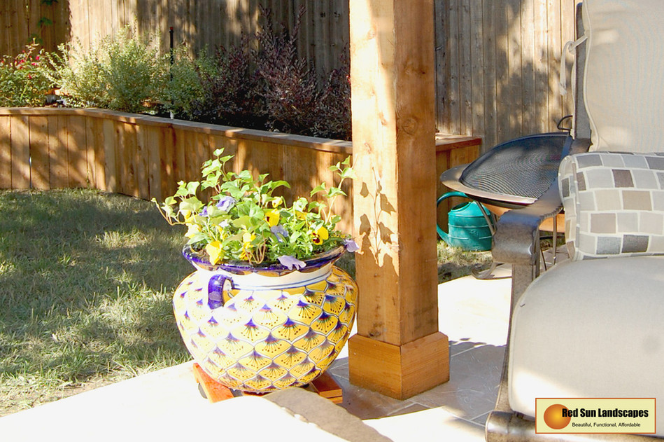 Backyard_05.jpg