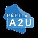 pepite.png