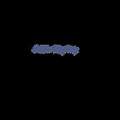 dagblad-trouw-logo-png-transparent.png