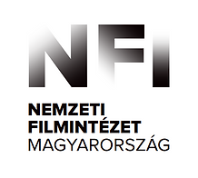 nfi logo.PNG
