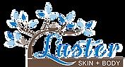 LUSTER-logo.png