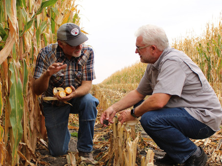 Applications from Conservation-Minded Landowners for the 2021 NRCS Regional Conservation Partnership