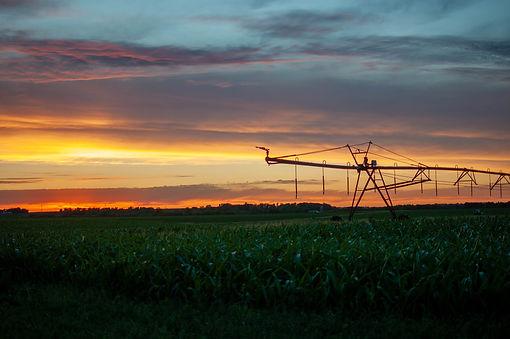 Farm Sunset Photo.JPG