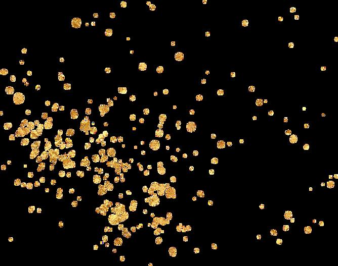 gold flecks.png