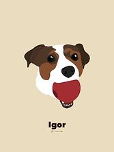 IGOR_30 x 40 copie 2.png