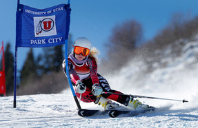 Utah Alpine Skier.jpg