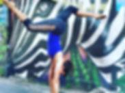 chiang_mai_zebra.jpg