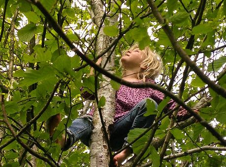 tree-climbing02-768x1024.jpg