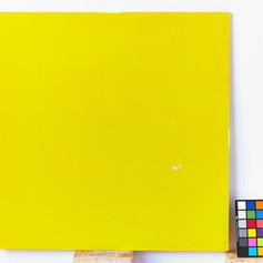 P018_B_Yellow_4x4.jpg