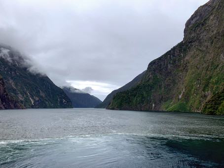 The Sounds, New Zealand