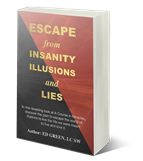 Insanity Illusions and Lies Book