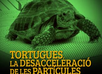 TORTUGUES. LA DESACCELERACIÓ DE LES PARTÍCULES.