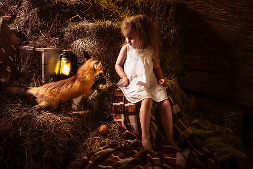 фотосессия с лисом в студии