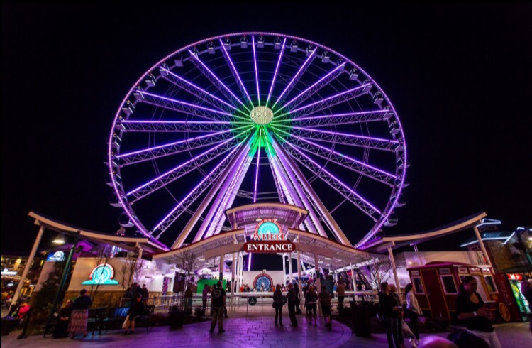 The Island of Pigeon Forge