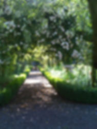Rose Arch.jpg