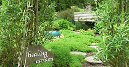 Scotland's Garden Scheme - Open Garden