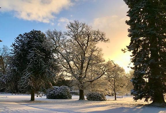 bield wintery.jpg