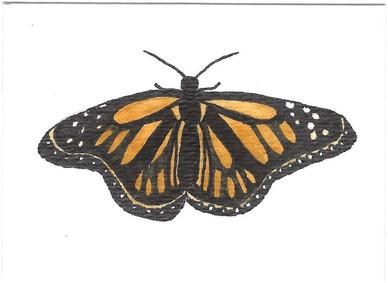 ATC: Butterfly