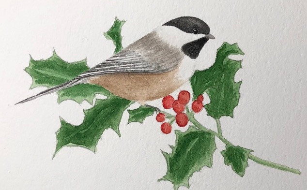 Chickadee on Holly