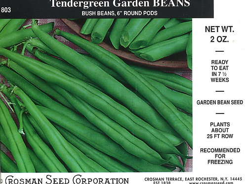 Bean Tendergreen