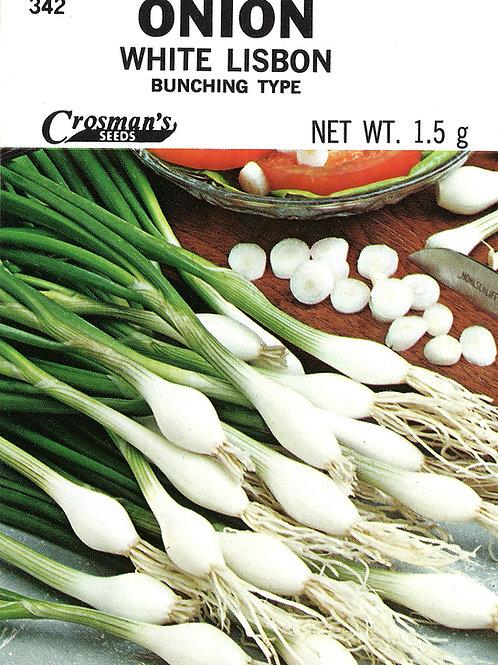 Onion White Lisbon Bunching Type