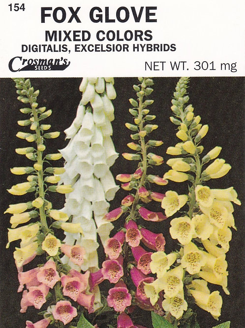 Fox Glove: Mixed Colors Digitalis, Excelsior Hybrids