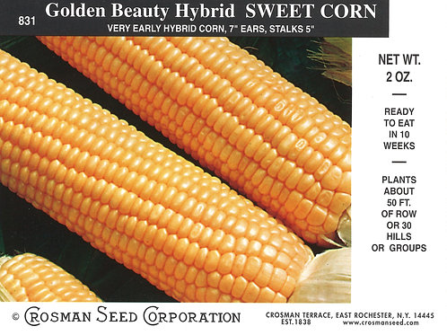 Sweet Corn Golden Beauty