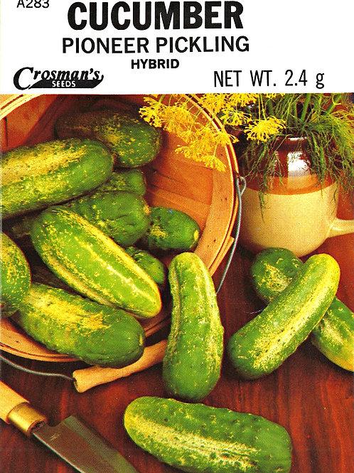 Cucumber Pioneer Pickling Hybrid