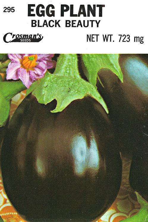 Eggplant Black Beauty