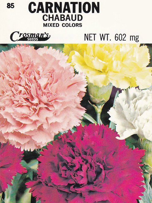 Carnation Chabaud Mixed Colors