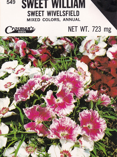 Sweet William Sweet Wivelsfield Mixed Colors