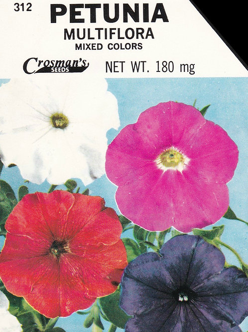 Petunia Multiflora Mixed Colors