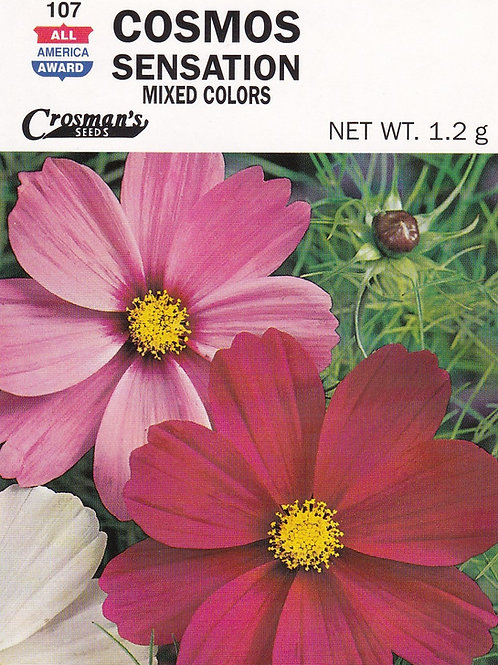 Cosmos Sensation Mixed Colors
