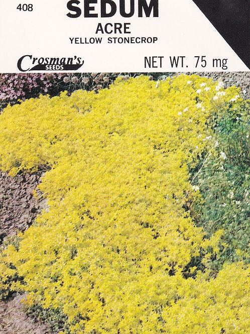 Sedum Acre, Yellow Stonecrop