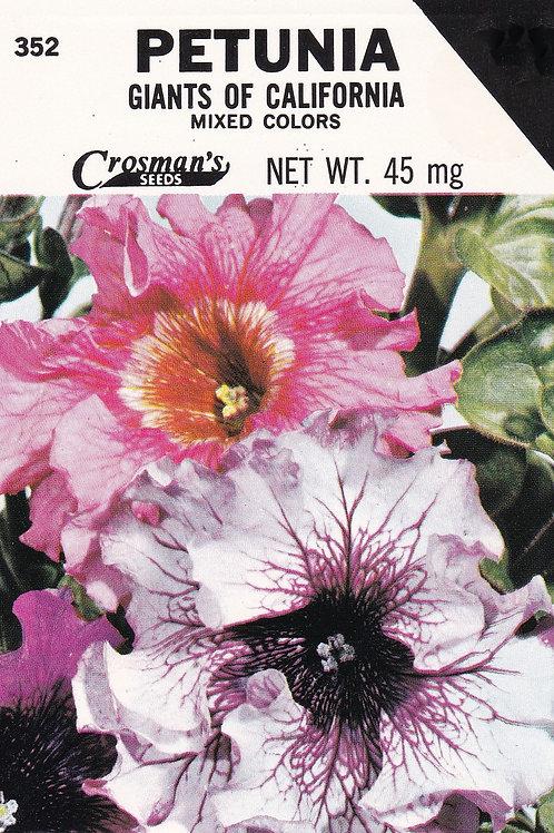 Petunia Giants of California Mixed Colors