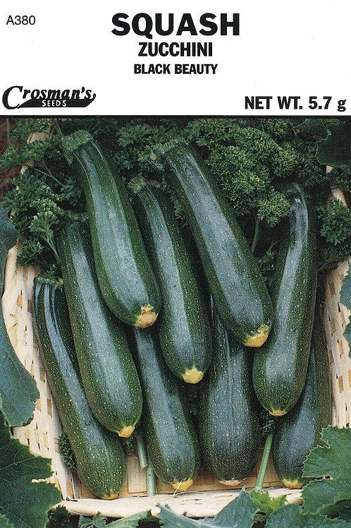 Squash Zucchini Black Beauty