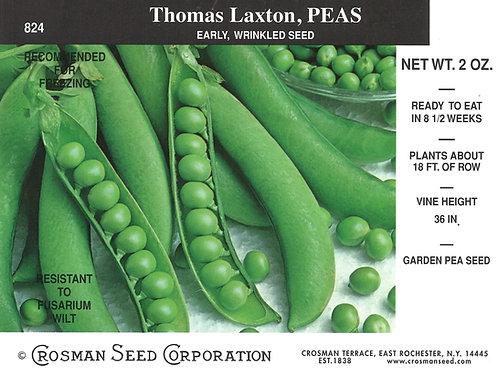 Peas Thomas Laxton
