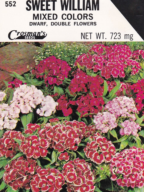 Sweet William Mixed Colors Dwarf Double Flowered