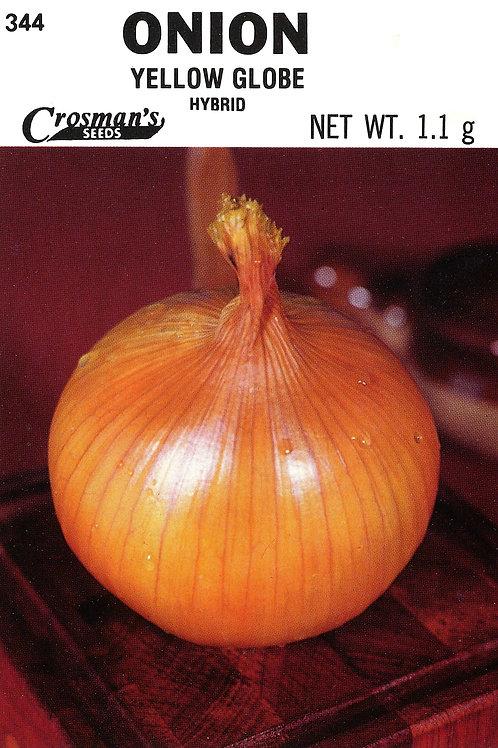 Onion Downing's Yellow Globe