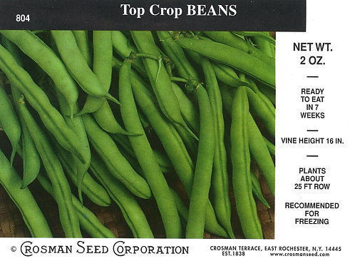 Bean Top Crop