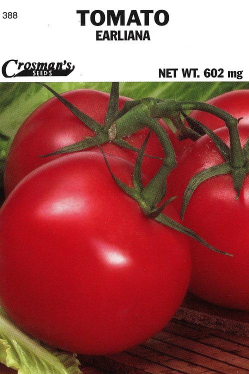 Tomato Earliana