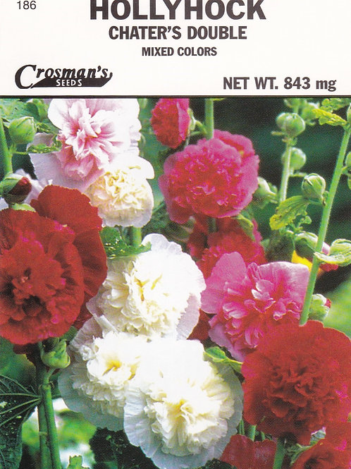Hollyhock: Chater's Double Mixed Colors
