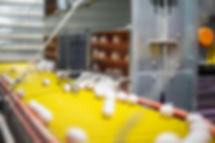 Eggcellent and cross conveyor - 010.jpg