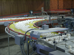 Lubing Conveyors and Watering