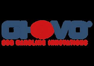 logo GI-OVO.png